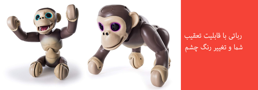 شامپانزه زومر